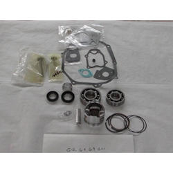 Yamaha Engine Rebuild Kit G14 1994-95
